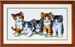 Kittens -  Cross Stitch Kit