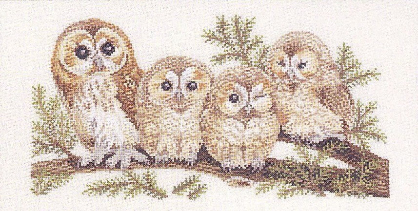 Eva Rosenstand Barn Owl Family - Aida Cross Stitch Kit