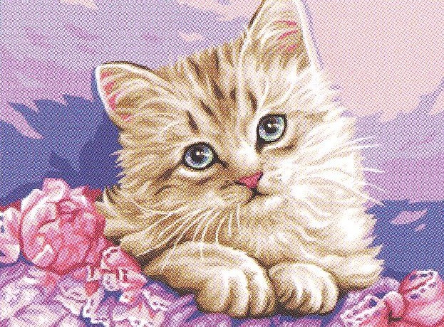 Royal Paris Cute Kitten Tapestry Canvas