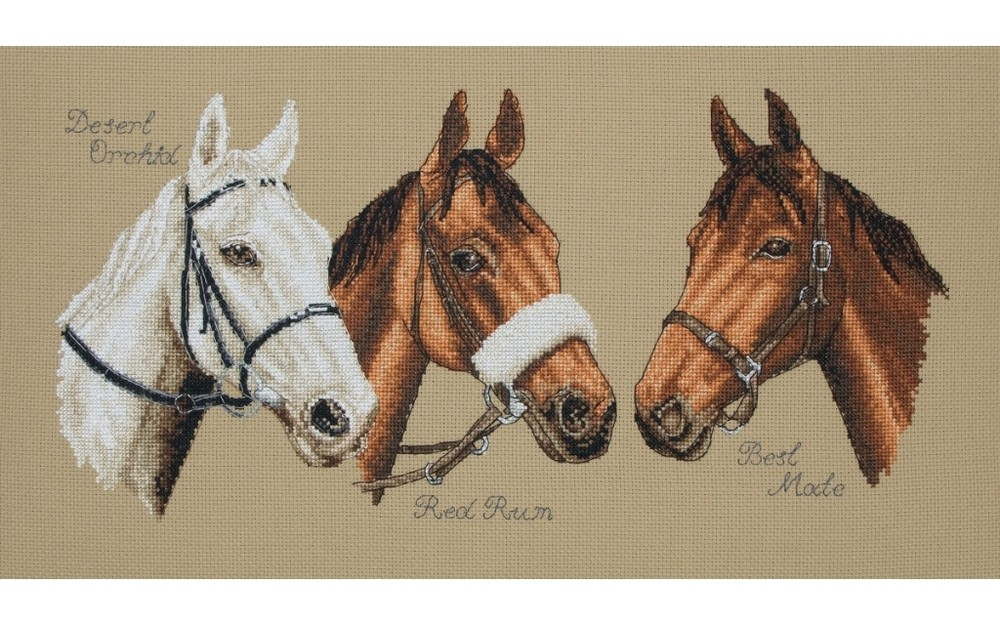 Three Champions -  Cross Stitch Kit