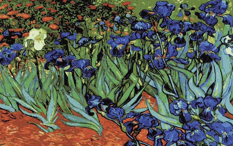 Irises -  Tapestry Canvas