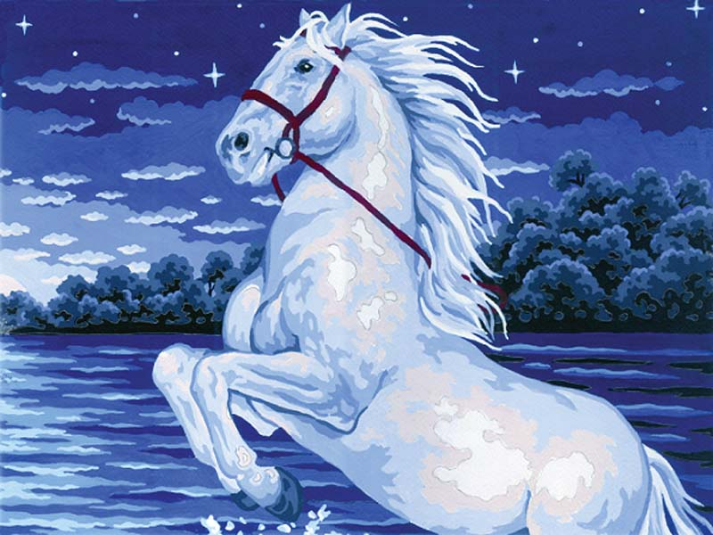 Magical Horse -  Tapestry Canvas