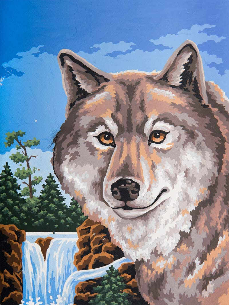 Wolf Portrait -  Tapestry Canvas