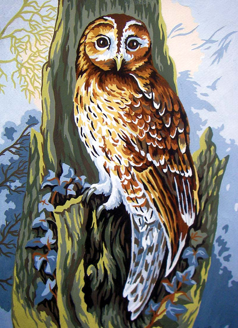 Owl -  Tapestry Canvas