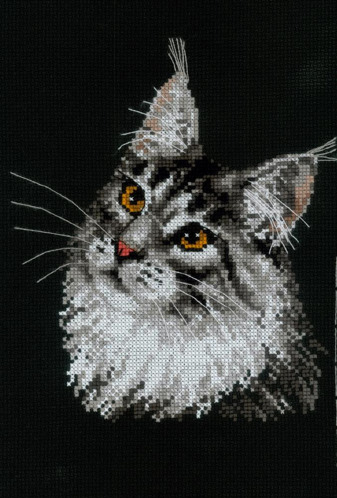 RIOLIS Maine Coon Cross Stitch Kit