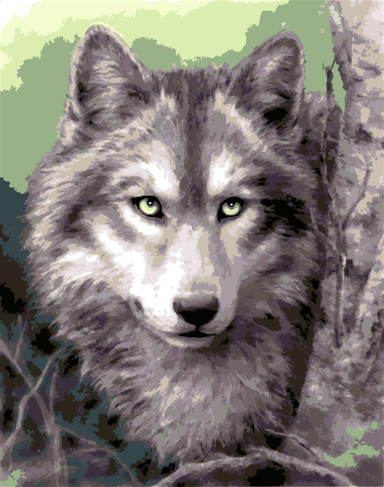 Grey Wolf -  Tapestry Canvas