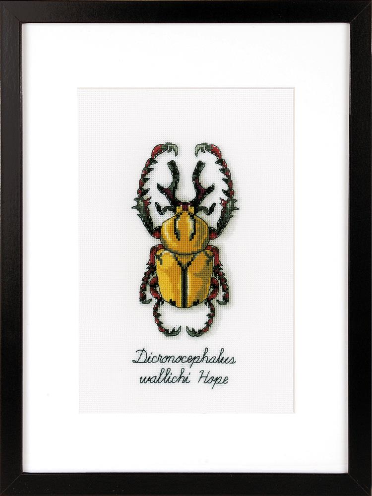 Vervaco Golden Beetle Cross Stitch Kit