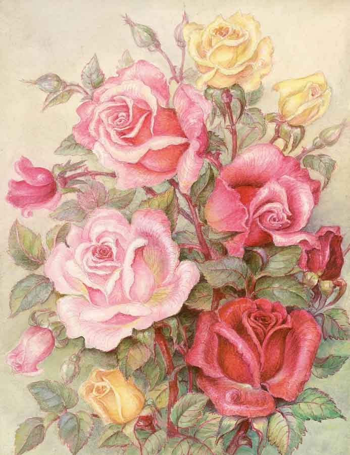 Romantic Roses -  Tapestry Canvas