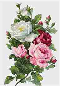 Bouquet of Roses -  Cross Stitch Kit