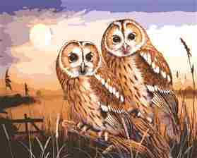 Owls by Moonlight -  Tapestry Canvas