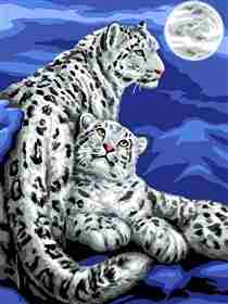 Snow Leopards -  Tapestry Canvas