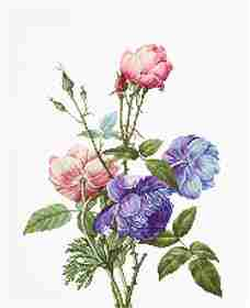 Bouquet with Rose and Peony -  Cross Stitch Kit