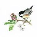 Heritage Chick Berry - Aida Cross Stitch Kit