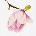 Lanarte Magnolia - Aida Floral Cross Stitch Kit