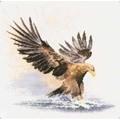 Heritage Eagle in Flight - Aida Cross Stitch Kit