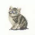 Heritage Tabby Kitten - Aida Cross Stitch
