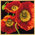 Dimensions Red Poppy Trio Tapestry Kit
