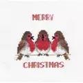 Derwentwater Designs Robin Trio Christmas Card Making Cross Stitch Kit
