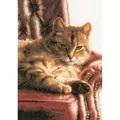 Lanarte Cat on Sofa - Evenweave Cross Stitch Kit
