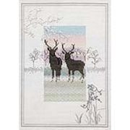 Derwentwater Designs  Frosty Deer Christmas Cross Stitch Kit