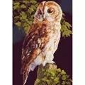 Lanarte Barn Owl Cross Stitch Kit