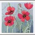 Derwentwater Designs Wild Poppies Long Stitch Kit
