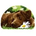 Vervaco Chocolate Labrador Rug Latch Hook Kit