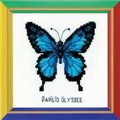 RIOLIS Happy Bee Ulysses Butterfly Cross Stitch Kit