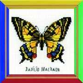 RIOLIS Happy Bee Swallowtail Butterfly Cross Stitch Kit