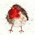 Bothy Threads Jolly Robin Christmas Cross Stitch Kit