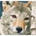 Lanarte Wolf Cross Stitch Kit