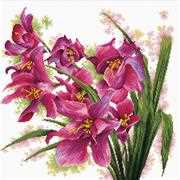 Needleart World Lovely Orchids No Count Cross Stitch Kit