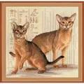 RIOLIS Abyssinian Cats Cross Stitch Kit