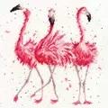 Bothy Threads Pink Ladies Cross Stitch Kit