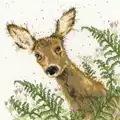 Bothy Threads Doe A Deer Cross Stitch Kit