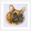 Merejka French Bulldog Cross Stitch Kit
