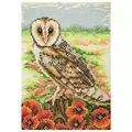Anchor Owl Cross Stitch Kit