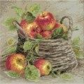 RIOLIS Ripe Apples Craft Kit