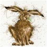 Bothy Threads Hare Brained Cross Stitch Kit