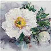 VDV White Peony Floral Embroidery Kit