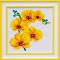 VDV Orchid Cross Stitch Kit