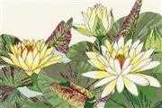 Bothy Threads Waterlily Blooms Floral Cross Stitch Kit