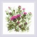 RIOLIS Thistle Floral Cross Stitch Kit