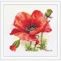 Merejka Red Poppy Cross Stitch Kit