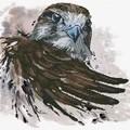 Needleart World Falcon Salute No Count Cross Stitch Kit