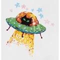Panna Cosmic Cat Embroidery Kit
