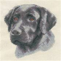 Panna Black Labrador Cross Stitch Kit