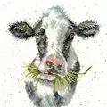 Bothy Threads Milk Maid Cross Stitch Kit