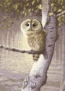 Night Watchman - Aida - Heritage Cross Stitch Kit