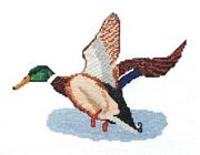 Abacus Designs Mallard in Flight Cross Stitch Kit